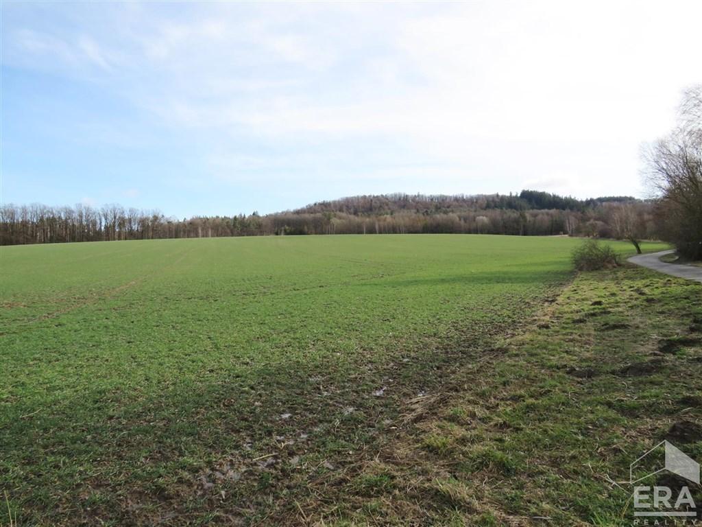 Prodej zemědělského pozemku 7 952 m2, Hradiště, okres Domažlice