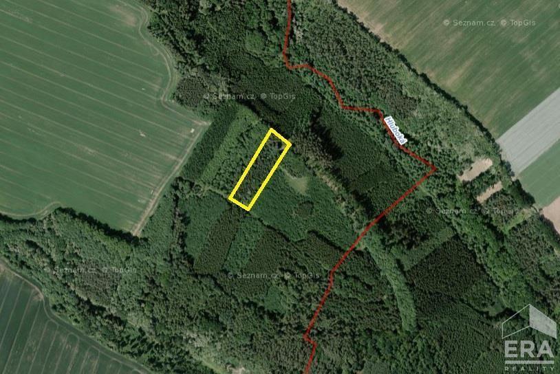 Lesní pozemek u obce Mělnické Vtelno