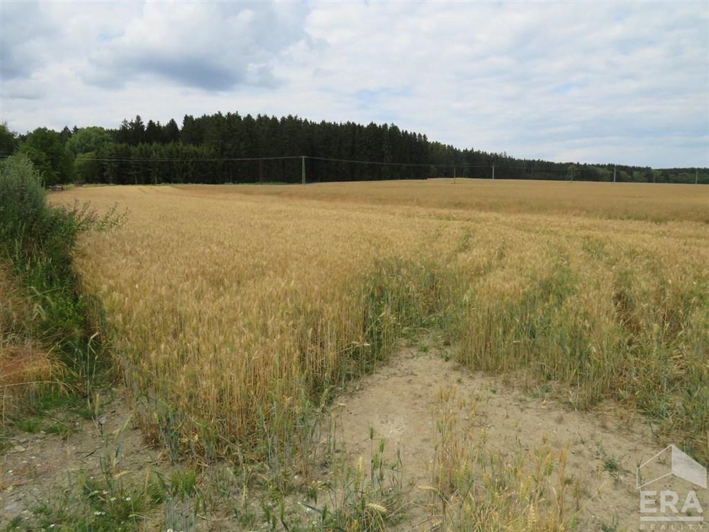 Prodej zemědělské půdy, 36 065 m2, Zadní Chodov, okres Tachov