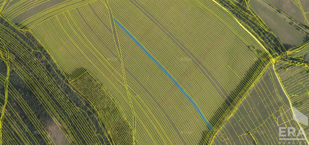 Prodej zemědělské půdy – trvalého travního porostu