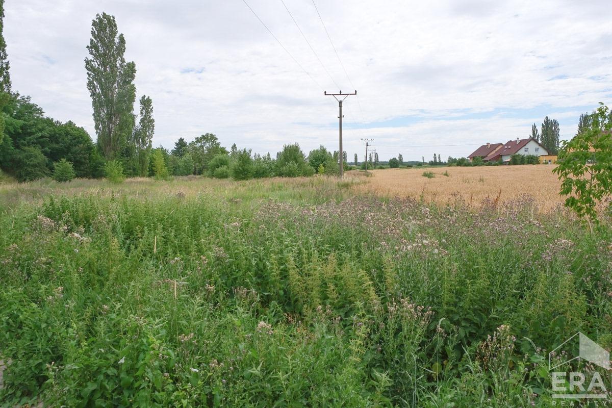 Pronájem zemědělského pozemku 1 500 m2, Nýřany, okres Plzeň – sever